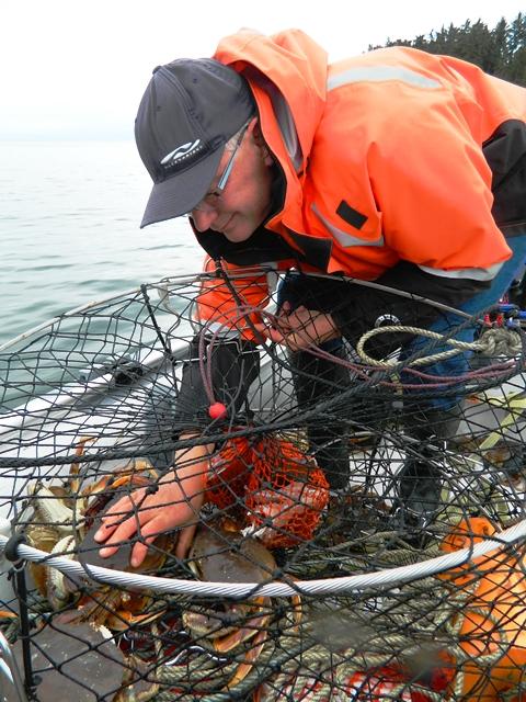 Crabs in Pot