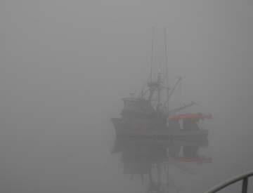 Foggy_1